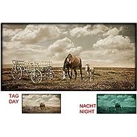 Startonight glow-in-the-dark quadro su tela cavalli in campo, Black/White, 120 x 60 cm