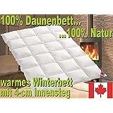 Warmes Winter Daunen Kassettenstegbett Daunendecke 100% Natur Daunenbett 135x200
