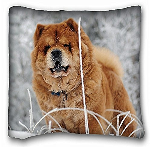 Decorativo Quadrato Throw Pillow Case animali Chow Chow Cane S Face Fat 18 x 18 in due lati