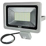 LED Flutlicht Fluter Strahler Kaltweiss/Warmweiss mit PIR Bewegungsmelder (50W, Kaltweiss)