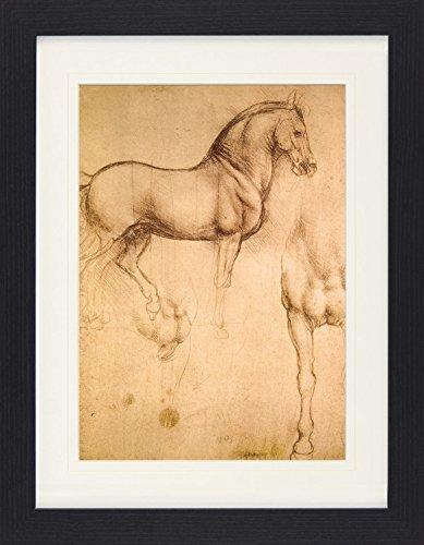 1art1 114221 Leonardo Da Vinci - Pferdestudie, 1493-1494 Gerahmtes Poster Für Fans Und Sammler 40 x...
