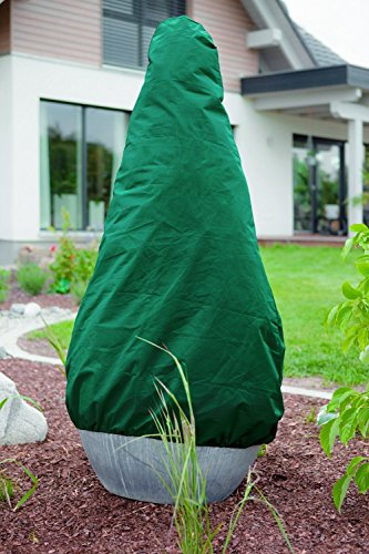 Plante Protection – Non-tissé Vert 120 x 180 cm