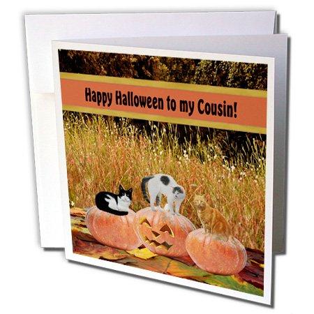 Drei Katzen auf drei Kürbisse, Happy Halloween zu Cousin–Grußkarten, 15,2x 15,2cm, Set 6(GC 157916_ ()