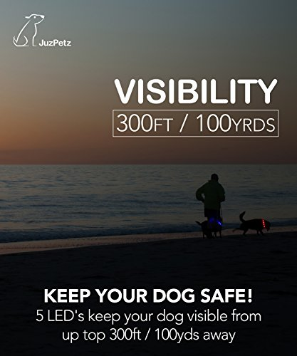 JuzPetz Rechargeable LED Dog Collar, Reflective Flashing Visible Collar [Water Resistant | 3 Glow Modes] Adjustable Light-Up Pet Safety Collar with USB Charging Cable 2