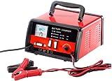 Lescars Profi Ladegerät: Automatisches Profi-Batterieladegerät 12 V / 24 V, max. 15 A (Profi Ladegerät Autobatterie)