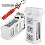 DJI Battery, Chinsion DJI Phantom 3 Battery 2-Pack 15.2V 4480mAh for DJI Phantom 3 SE, DJI Professional, DJI Phantom 3 Advanced, DJI Phantom 3 Standard, DJI 4K Drone