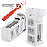 Batterie DJI phantom 3, Chinsion Batterie DJI 15.2V 4480mAh pour DJI phantom 3 SE, DJI phantom 3 Pro, DJI phantom 3 Advanced, DJI phantom 3 Standard, DJI phantom 3 4K Drones(2-pack))