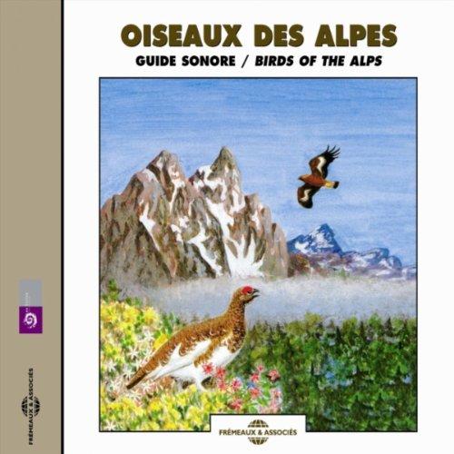 Pie grieche ecorcheur (Red Backed Shrike) -