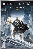 Close Up Destiny Poster Rise of Iron (93x62 cm) gerahmt in: Rahmen Silber