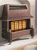 Flavel Regent Gas Fire - Natural Gas Heater, Outset Fireplace - Regency Style - Bronze
