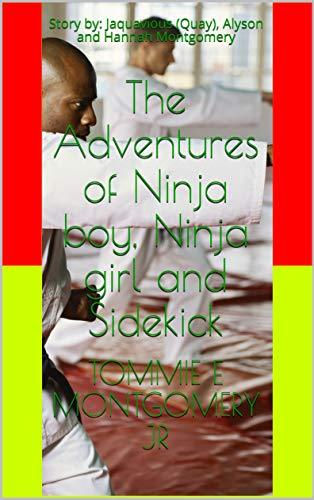 The Adventures of Ninja boy, Ninja girl and Sidekick: Story ...
