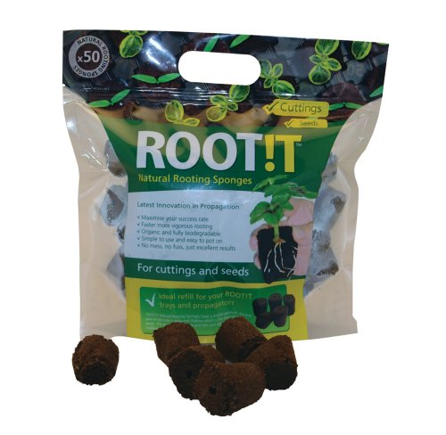 roott-rooting-sponges-refill-bag-pack-of-50