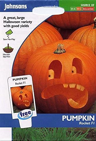 Johnsons Seeds - Pictorial Pack - Vegetable - Pumpkin Rocket