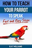 How to Teach your Parrot to Speak In 5 Easy Steps