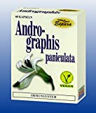 ANDROGRAPHIS paniculata Kapseln 60 St Kapseln