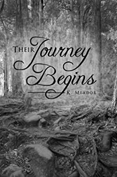 Their Journey Begins (Journey to Freedom) by [Meador, K.]