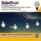Solar Brite Deluxe 20 Warm White LED Solar Powered Festoon Party Lights - Clear Bulb (1)