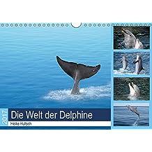 Die Welt der Delphine (Wandkalender 2017 DIN A4 quer): Intelligente, freundliche Delphine beim Spiel (Monatskalender, 14 Seiten ) (CALVENDO Tiere)