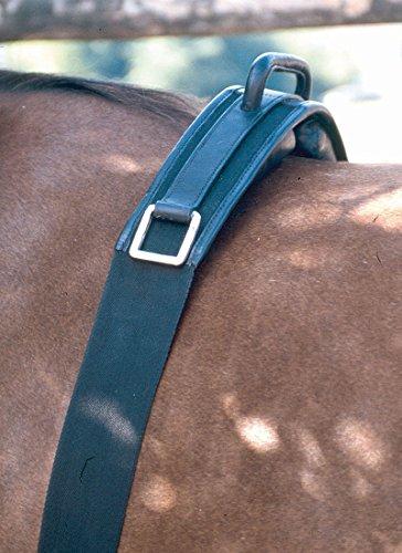 Longiergurt Reitgurt mit Handgriff und Steigbügelhalterung Gr. 160 cm = Pony | Reitgurt mit Haltegriff auch für Holzpferde