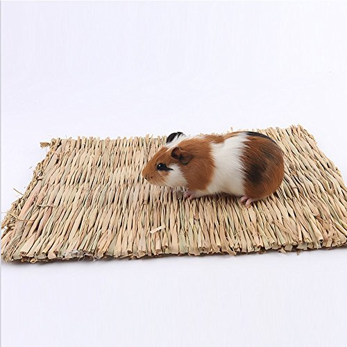qees natürlicher gewebter Gras Matte handgefertigt aus Seegras Pet Mats Bett Hamster Igel Guinea Pig Bunny Bed Box Pad CC01 (Matte Gras Pet)