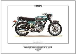Triumph Trident T150Fine Art Print.–-- prêt à cadre.