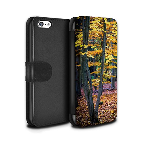 Stuff4 Coque/Etui/Housse Cuir PU Case/Cover pour Apple iPhone 5C / Feuilles/Arbre Design / Automne Saison Collection Feuilles/Arbre