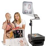 3B Scientific Menschliche Anatomie - Torso-Foliensatz