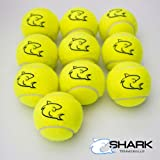 10x alta qualità Giallo Palline da tennis ideale per tennis, cricket, per bambini, motivo: cani