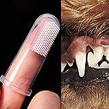 Zahnpflege Reinigungsmittel