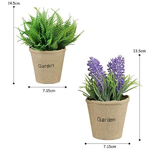 TONZE Kunstpflanze Klein Kunstblume Lavendel und Gras im Topf für Haus Deko,2er Set