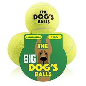 Der Hundeball Für Hunde. Der Ball Zum Spielen Und Trainieren. Diese Bälle Halten Ihren Hund Gesund – Das Beste Für Die Gesundheit Eines Hundes