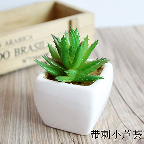 WANG-shunlida Unechte Blumen Topfpflanze Simulation Sukkulenten Bonsai Mini Mode Schmuck sukkulenten Topfpflanzen Blume Simulation, stachelige Aloe Vera