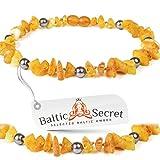 Bernsteinkette für Hund & Katze von Baltic Secret