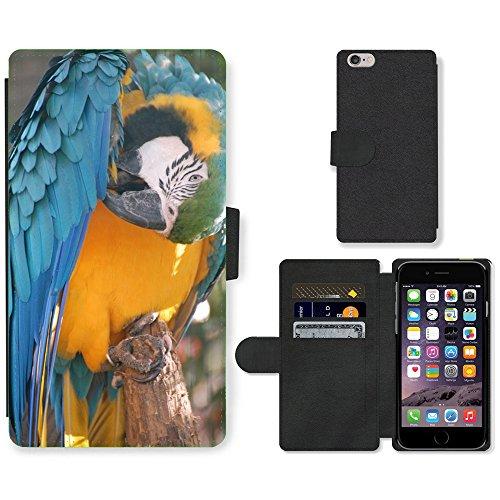 Just Mobile pour Hot Style Téléphone portable étui portefeuille en cuir PU avec fente pour carte//m00139553Parrot couleurs Animaux//Apple iPhone 6Plus 14cm