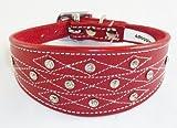 4doggies Hundehalsband, Leder, für Windhunde, Stickmotiv mit Schmucksteinen, 35,6-43,2cm, Rot