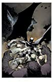 Batman: The Court of Owls Saga (Essential Edition)