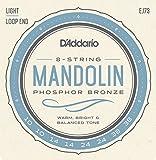 D\'Addario EJ73 Cordes pour Mandoline