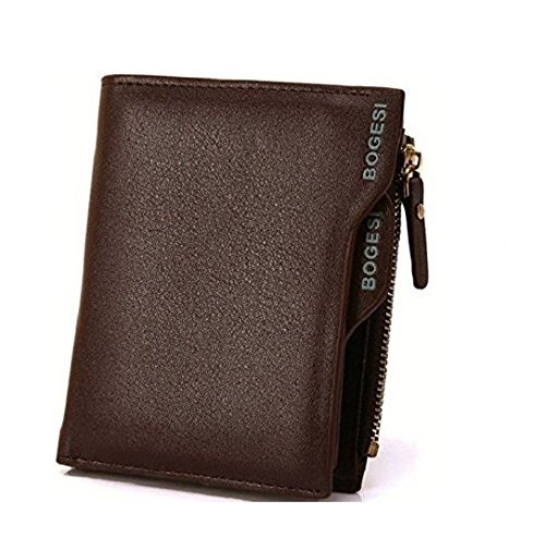 BOGESI Brown Men's Wallet