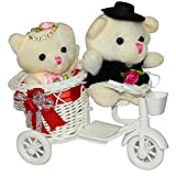 Anishop Best Gifts Couple Teddy Cycle Va...