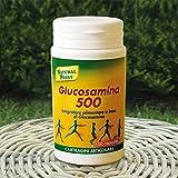 NATURAL POINT GLUCOSAMINA 500 100 CPS