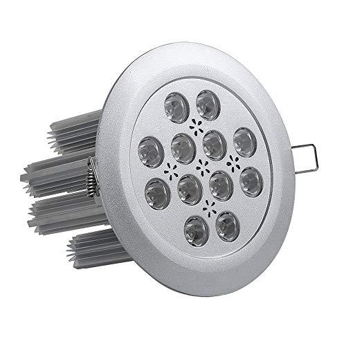 FNCUR Spotlight LED-Deckenleuchte Embedded 36W Goldschmuck Shop-Showroom Clothing Store Zähler Spotlight (Color : Weißes Licht)