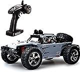 TOZO® C5031 RC Coche Juguete 4WD de Alta Velocidad 30MPH+ 4x4 Escala 1:12 Mando a Distancia de 2,4Ghz Coche de Carreras Eléctric Vehículo con Batería Recargable Color Gris
