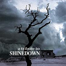 Tribute to Shinedown