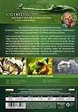 Die Welt der Drachen, Echsen und Amphibien