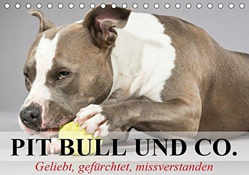 Pit Bull und Co. - Geliebt, gefürchtet, missverstanden (Tischkalender 2019 DIN A5 quer): Listenhunde zwischen Wahrheit und Hetze. (Monatskalender, 14 Seiten ) (CALVENDO Tiere) -