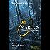 Marcus - Maximus Alamannicus: Schicksal an Mosel und Rhein Band 3 (Marcus-Trilogie)