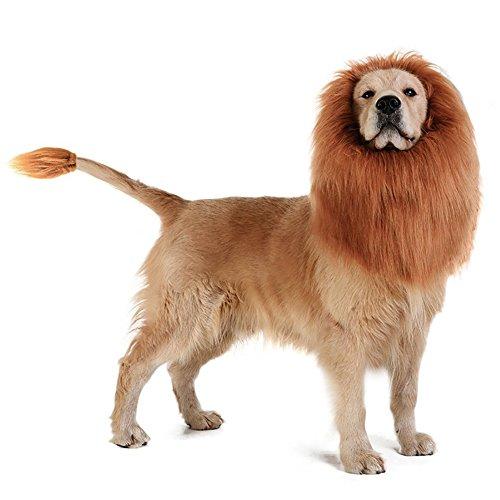 e Kostüm für Hund, Designerbox Löwe Perücke Haar für mittelgroße bis große Hund mit Ohren & Schwanz Pet Festival Party Fancy Haar Hund Kleidung Kleidung ()