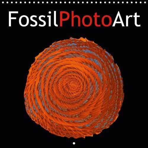 FossilPhotoArt 2019: Photos de fossiles manipulees a l'ordinateur. par Gero Moosleitner