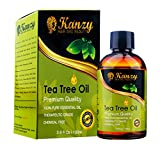 Essential Tea Tree Oil Best Treatment for Face Hair Hand Nail Acne Lice Many Skin Care Beauty Conditions & Aromatherapy Message Oil – Useful for Antiseptic & Anti-fungal / fungus and fungi Athletes Foot also Use in Diffuser 100% PURE & NATURAL