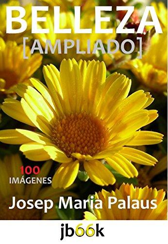 Descargar Libro Belleza [ampliado] de JOSEP MARIA PALAUS PLANES